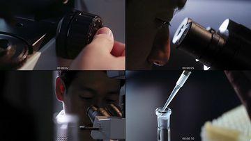 显微镜科研视频素材