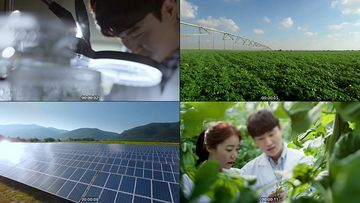 大棚蔬菜种植视频素材