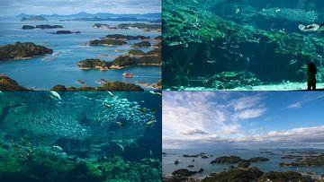 4K日本長崎九州岛视频素材