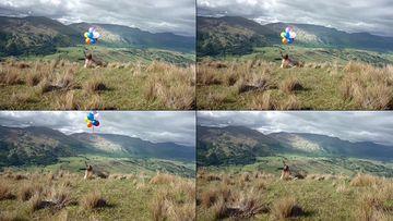 4K坐在山顶上放飞气球