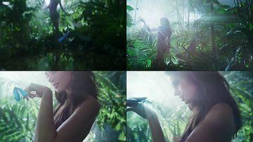 梦幻的蝴蝶视频素材