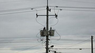 4K传统电线杆视频素材