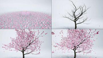 花瓣能量汇聚生长出大树