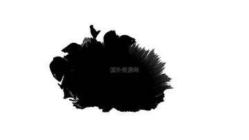 水墨通道视频素材31