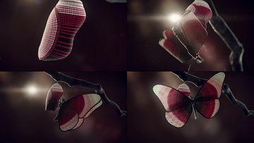 破蛹而出的蝴蝶视频素材