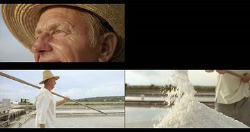 制盐产盐盐湖盐水视频