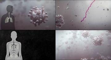 人体内的冠状病毒感染健康细胞