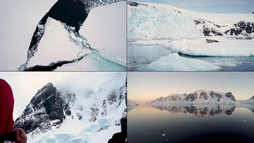 南极冰川融化视频素材