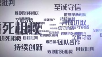 企业价值观文字汇聚LOGO标志ae
