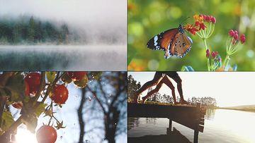 自然环境一组视频素材