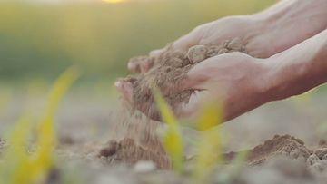 4K肥沃的土壤视频素材