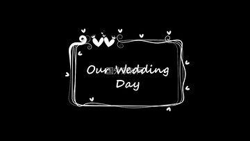 我们的婚礼手绘视频素材